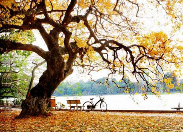 Đặt vé máy bay đi Hà Nội Vietjet giá rẻ vào mùa thu