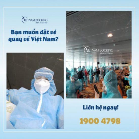 Mỹ về Việt Nam